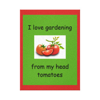 I love gardening from my head tomatoes canvas print