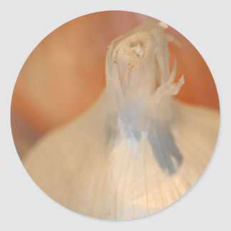 I Love Garlic! sticker