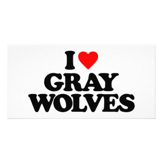 I LOVE GRAY WOLVES CUSTOM PHOTO CARD