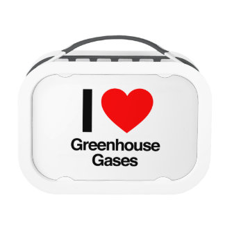 i love greenhouse gases lunchboxes