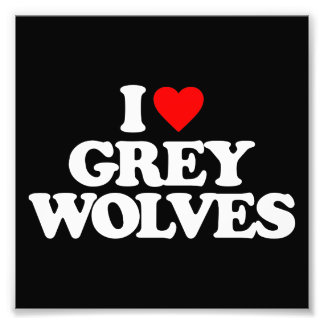 I LOVE GREY WOLVES PHOTOGRAPH