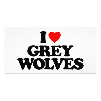 I LOVE GREY WOLVES PHOTO CARD