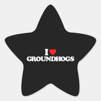 I LOVE GROUNDHOGS STICKER