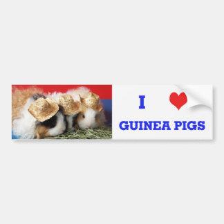 I Love Guinea Pigs Bumper Sticker