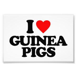 I LOVE GUINEA PIGS PHOTO