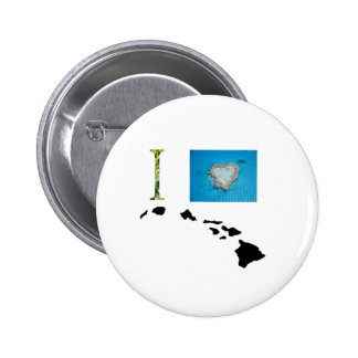 I Love Hawaii Design Pins