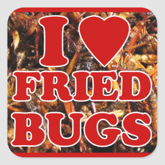 I Love (Heart) Fried Bugs / Edible Insects Square Sticker