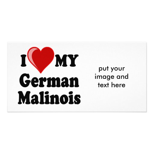 I Love (Heart) My German Malinois Dog Photo Card
