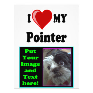 I Love (Heart) My Pointer Dog Full Color Flyer