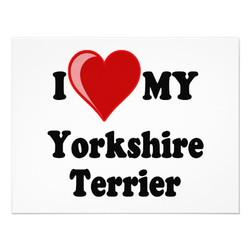 I Love (Heart) My Yorkshire Terrier Dog Custom Announcements