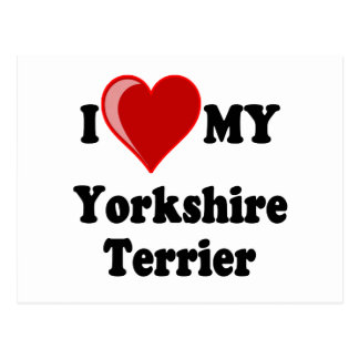 I Love (Heart) My Yorkshire Terrier Dog Postcard
