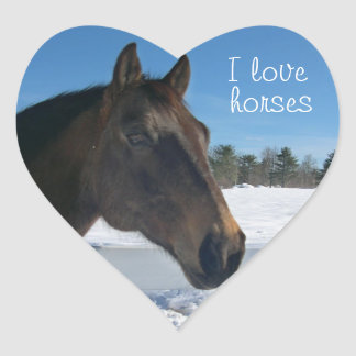 I Love Horses Heart Shaped Sticker