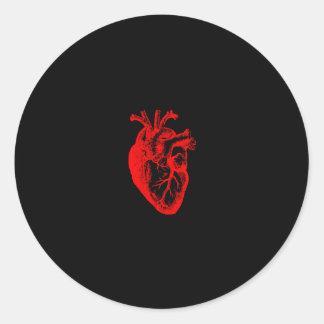 I love / I heart heart anatomy Classic Round Sticker
