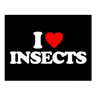 I LOVE INSECTS POSTCARD