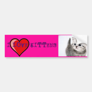 i love kittens bumper sticker