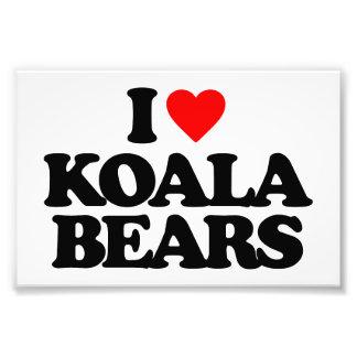 I LOVE KOALA BEARS PHOTOGRAPH