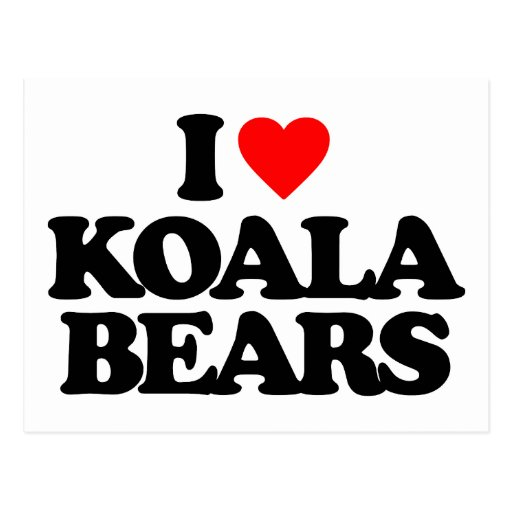 I LOVE KOALA BEARS POST CARD