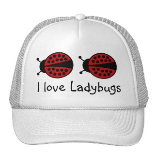 I love Ladybugs hat