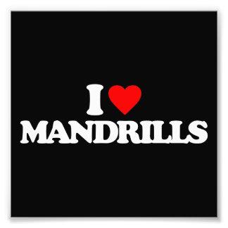 I LOVE MANDRILLS PHOTO PRINT
