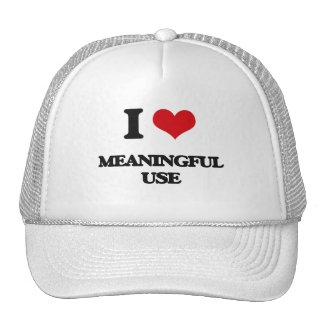 I Love Meaningful Use Mesh Hat