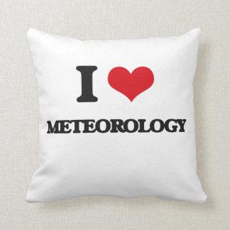 I Love Meteorology Cushion