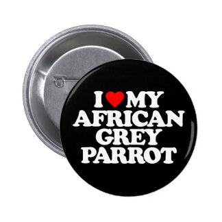 I LOVE MY AFRICAN GREY PARROT PINBACK BUTTON