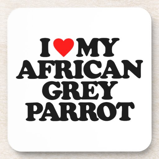 I LOVE MY AFRICAN GREY PARROT COASTERS