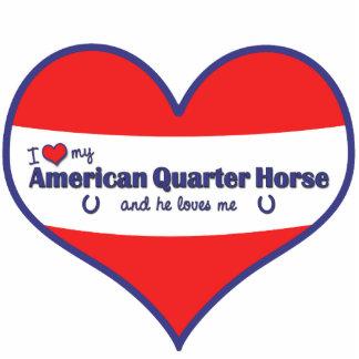 I Love My American Quarter Horse (Male Horse) Standing Photo Sculpture