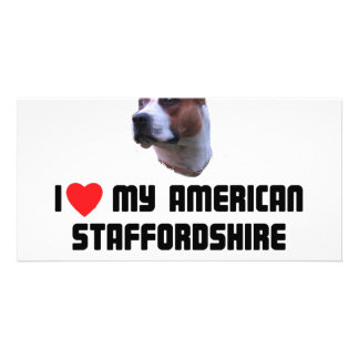 I Love My American Staffordshire Terrier Photo Cards