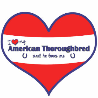 I Love My American Thoroughbred (Male Horse) Photo Cutout