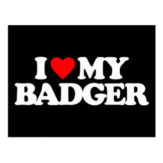 I LOVE MY BADGER POSTCARD