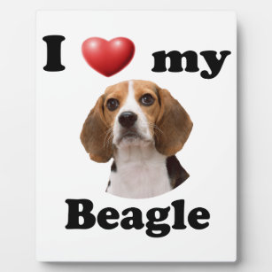 I Love My Beagle Plaque