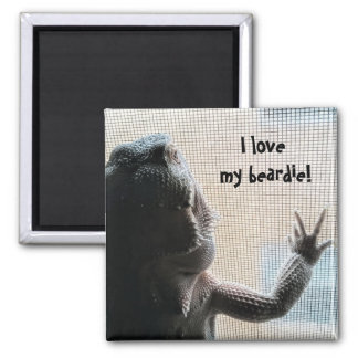 I love my beardie Cute Bearded Dragon Print Magnet
