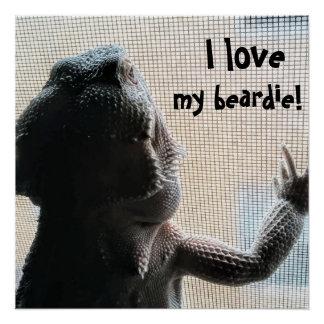 I love my beardie Fun Bearded Dragon Picture Poster