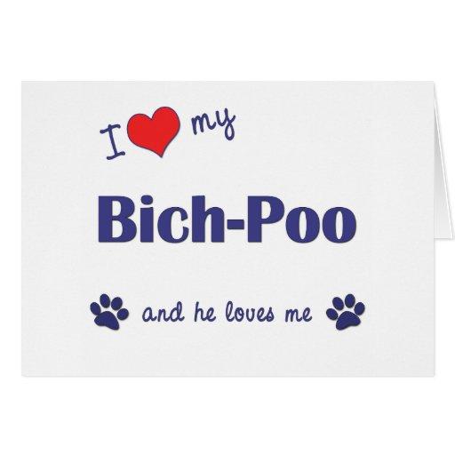 I Love My Bich-Poo (Male Dog) Cards