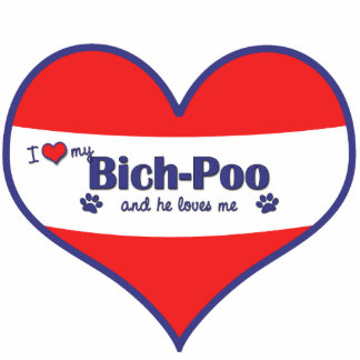I Love My Bich-Poo (Male Dog) Photo Sculpture Decoration