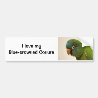 I Love my Blue-crowned Conure Bumper Sticker