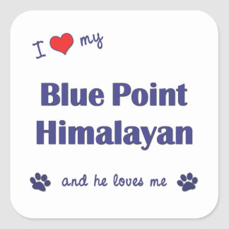I Love My Blue Point Himalayan (Male Cat) Square Sticker