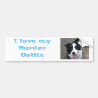 I love my Border Collie Bumber sticker