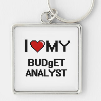 I love my Budget Analyst Silver-Colored Square Key Ring