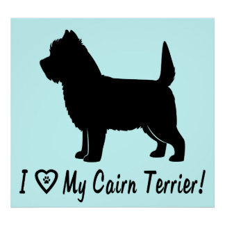 I Love My Cairn Terrier Poster