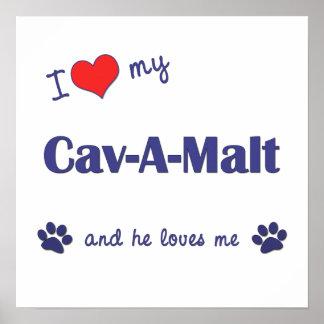 I Love My Cav-A-Malt Male Dog Posters