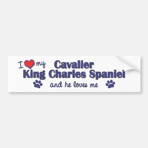 I Love My Cavalier King Charles Spaniel (Male Dog) Bumper Stickers