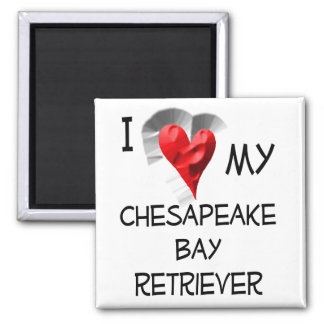 I Love My Chesapeake Bay Retriever Square Magnet