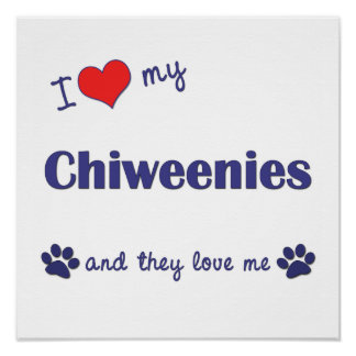 I Love My Chiweenies (Multiple Dogs) Poster Print