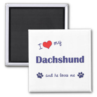 I Love My Dachshund Male Dog Magnet