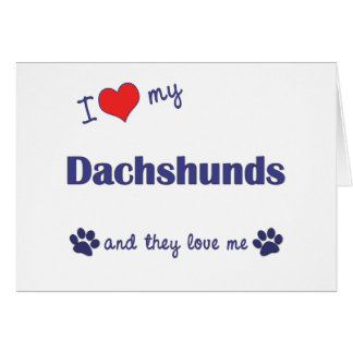 I Love My Dachshunds Many Dogs Greeting Cards