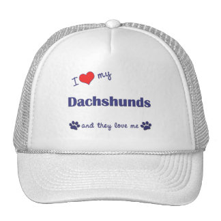 I Love My Dachshunds (Multiple Dogs) Hat