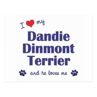 I Love My Dandie Dinmont Terrier (Male Dog) Post Cards