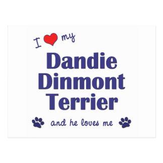 I Love My Dandie Dinmont Terrier (Male Dog) Postcard